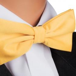 Pánský motýlek žlutý Assante 90378